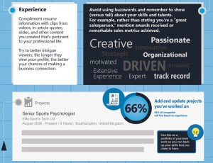 linked in experience infographic